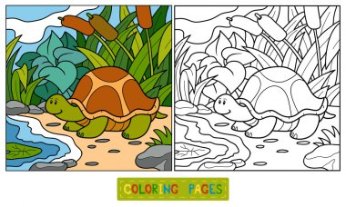 Coloring book (turtle)