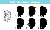 Fényképek Find the correct shadow (hedgehog)
