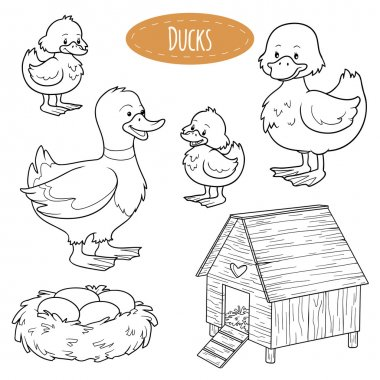 Set of cute farm animals and objects, vector family ducks