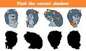 Fényképek Find the correct shadow (hedgehog)