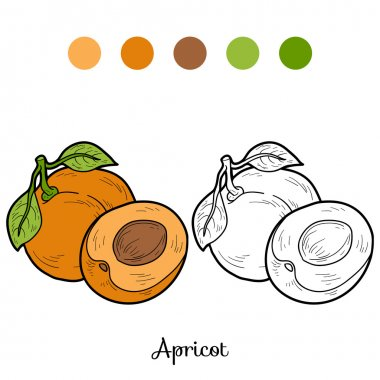 Coloring book: fruits and vegetables (apricot)