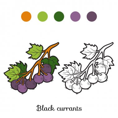 Coloring book: fruits and vegetables (black currants)