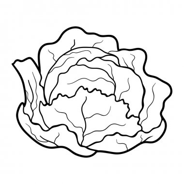 Coloring book: fruits and vegetables (cabbage)