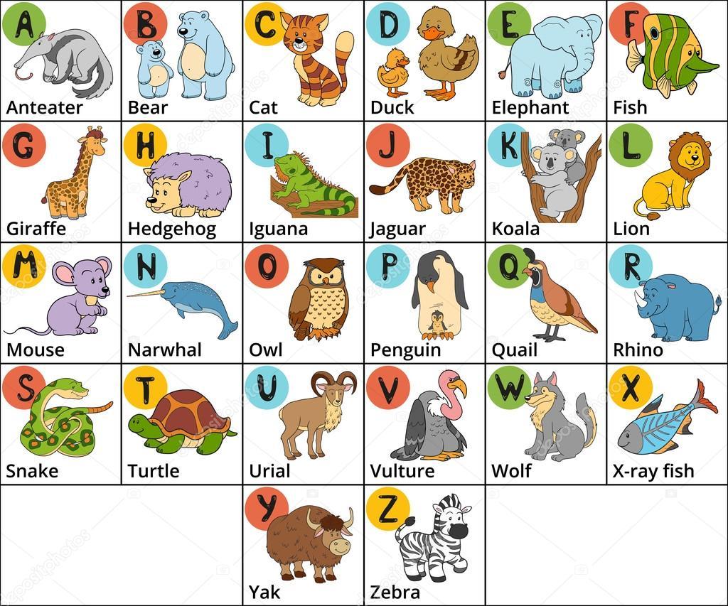 Extremamente Alfabeto de zoológico de cor de vetor com animais fofos no fundo  EK57