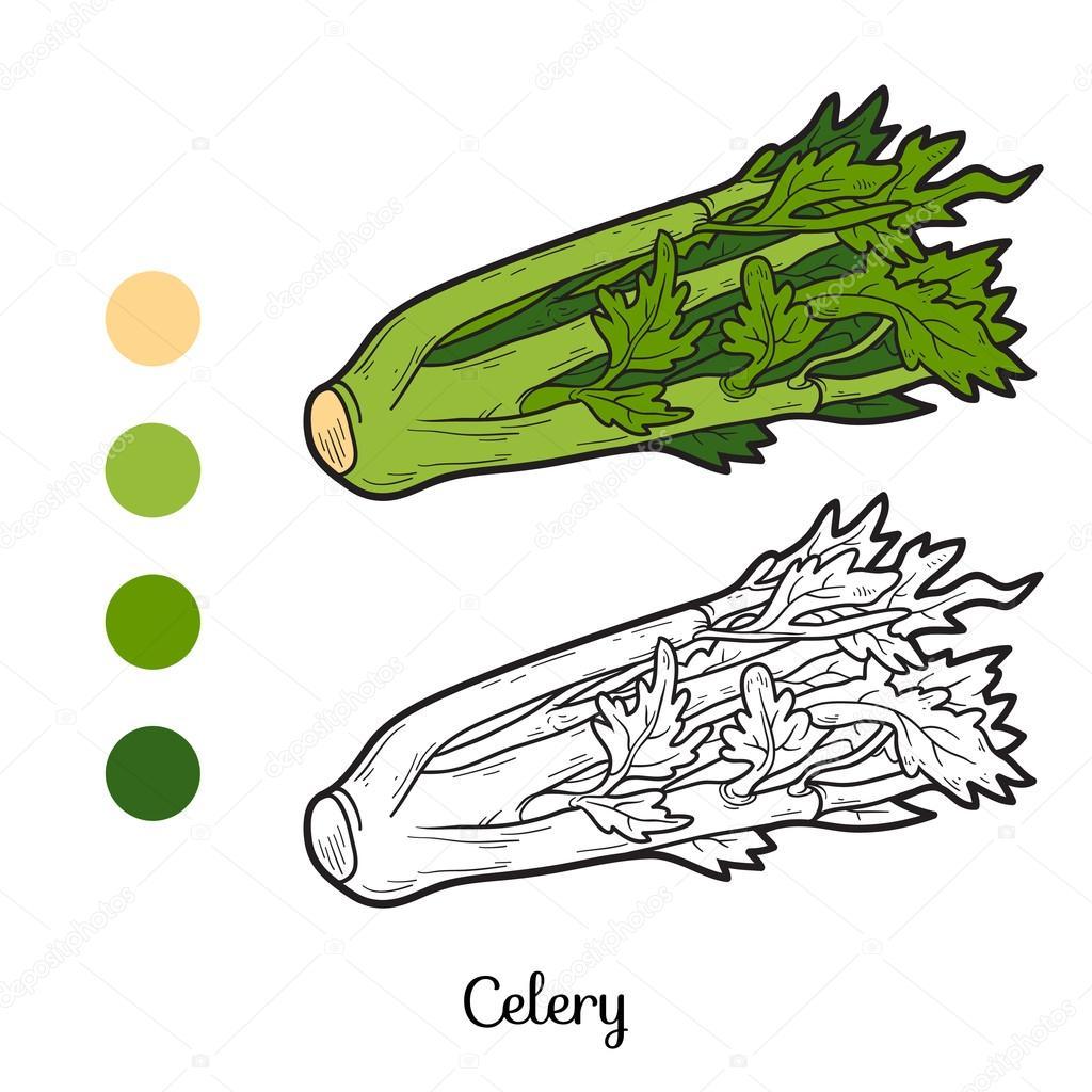 Раскраска: фрукты и овощи (сельдерей ) — Векторное ...