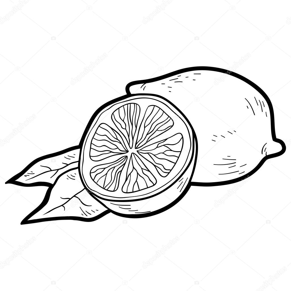Citrus Fruits Cartoon For Coloring Book Pics Stock Photos All Sites