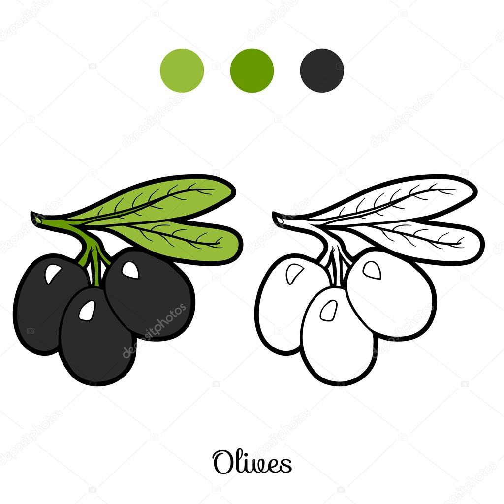 Coloring Book Fruits And Vegetables Olives Stock Vector