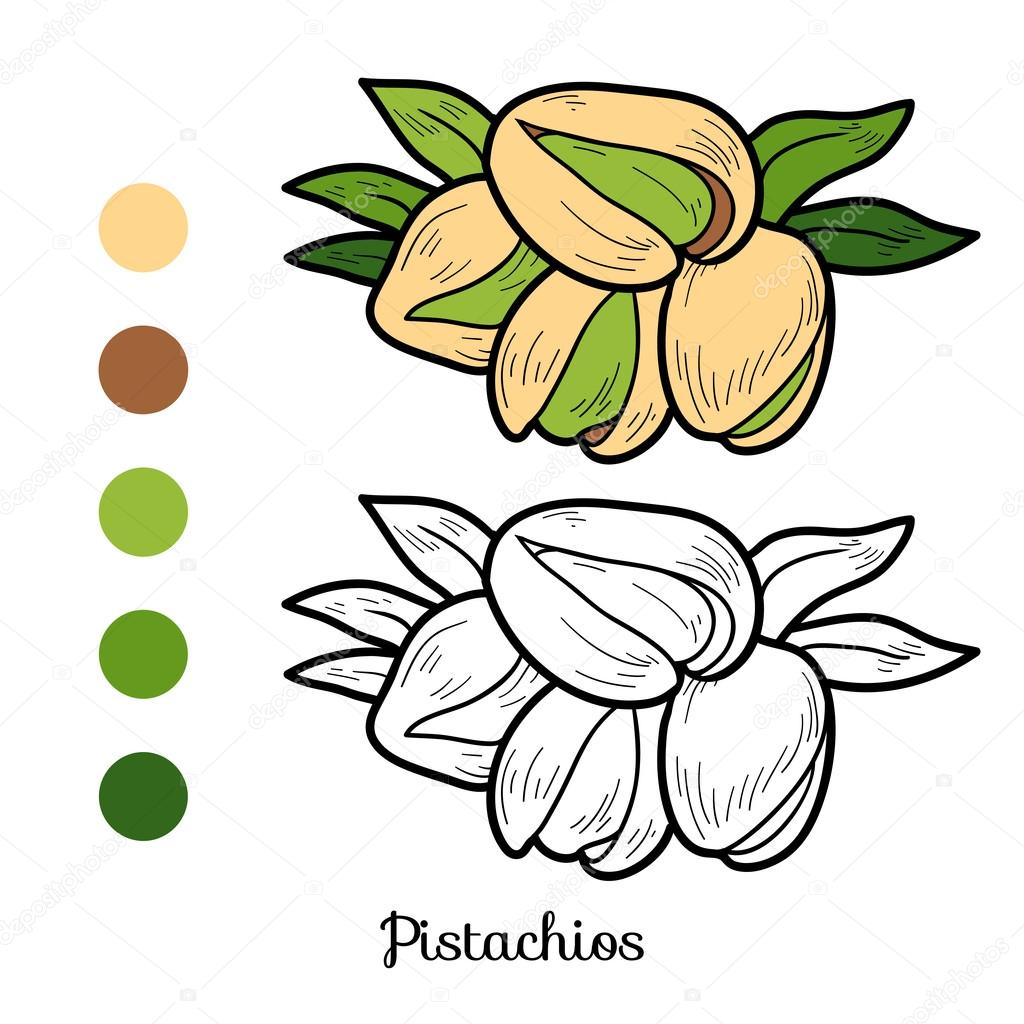 Coloring Book Fruits And Vegetables Pistachios Stock Vector