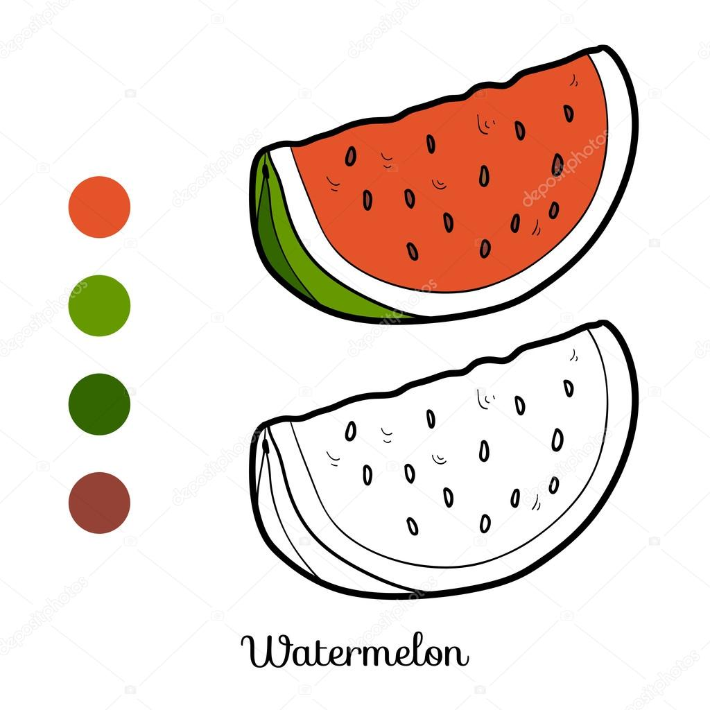 Libro De Colorear Frutas Y Hortalizas Sandía Vector De Stock