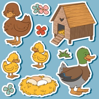 Color set of cute farm animals and objects, vector family duck a