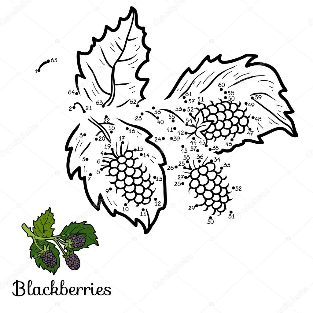 Numbers game: fruits and vegetables (blackberries)
