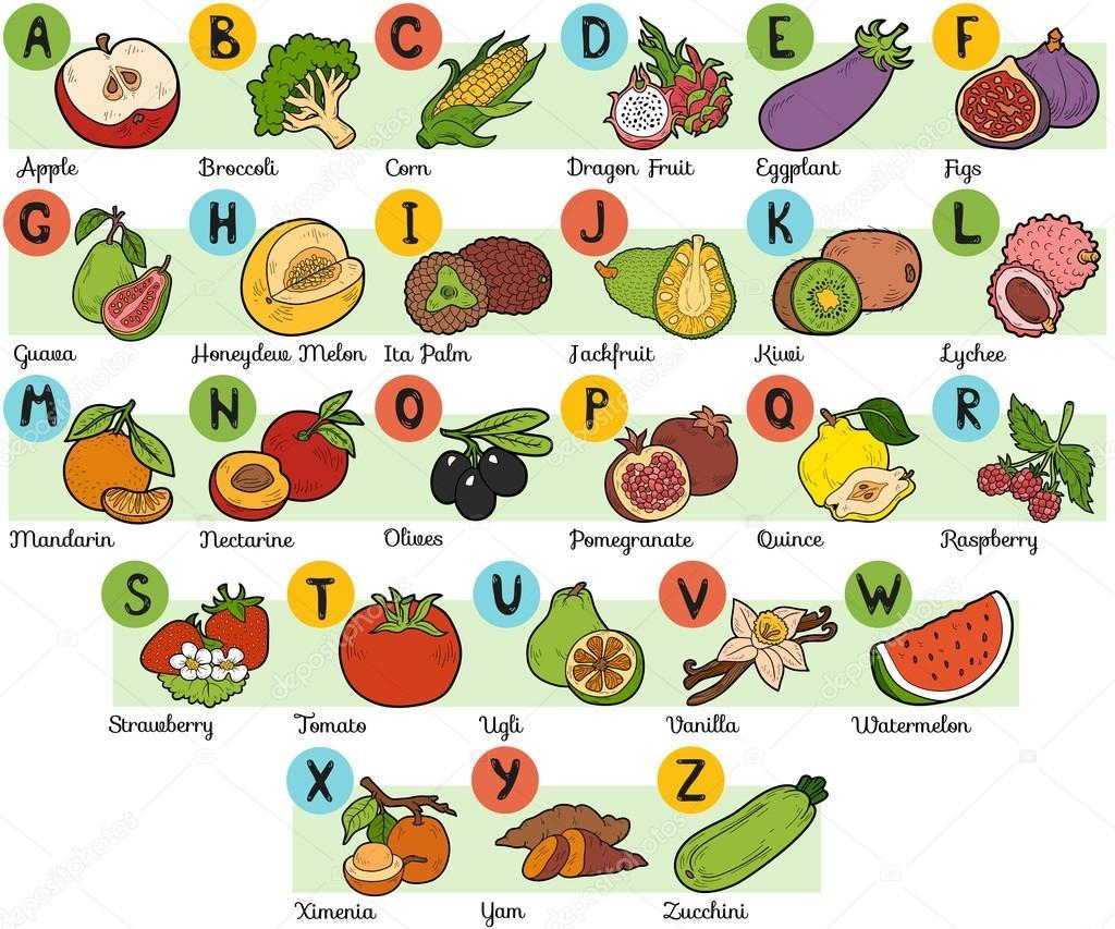 Alfabeto de colores para ni os frutas y verduras vector for S and m pictures
