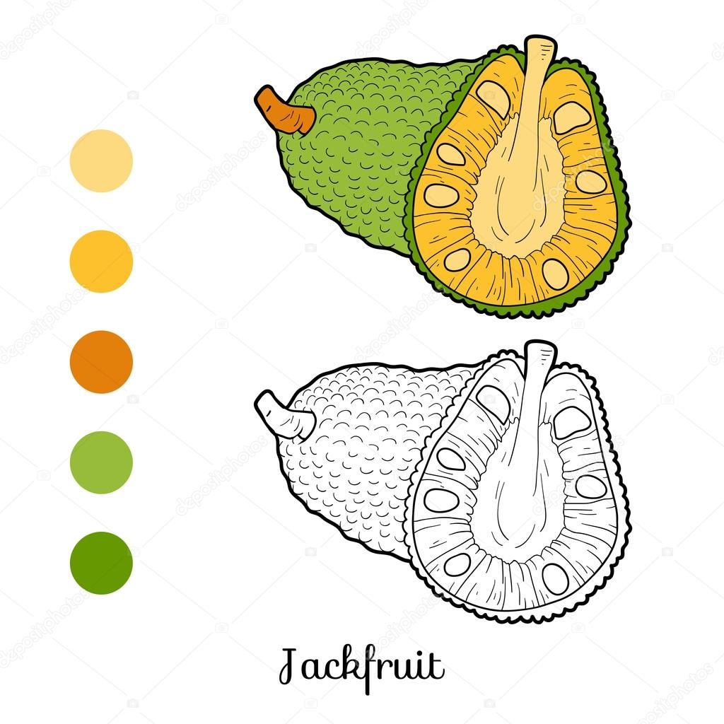 Coloring book for children: fruits and vegetables (jackfruit)