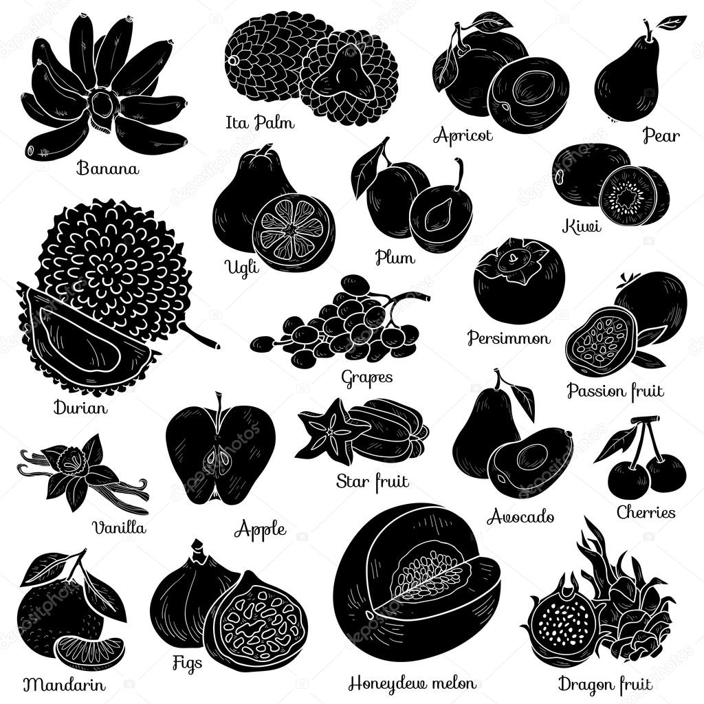 Shadow set with tropical fruits, vector cartoon collection