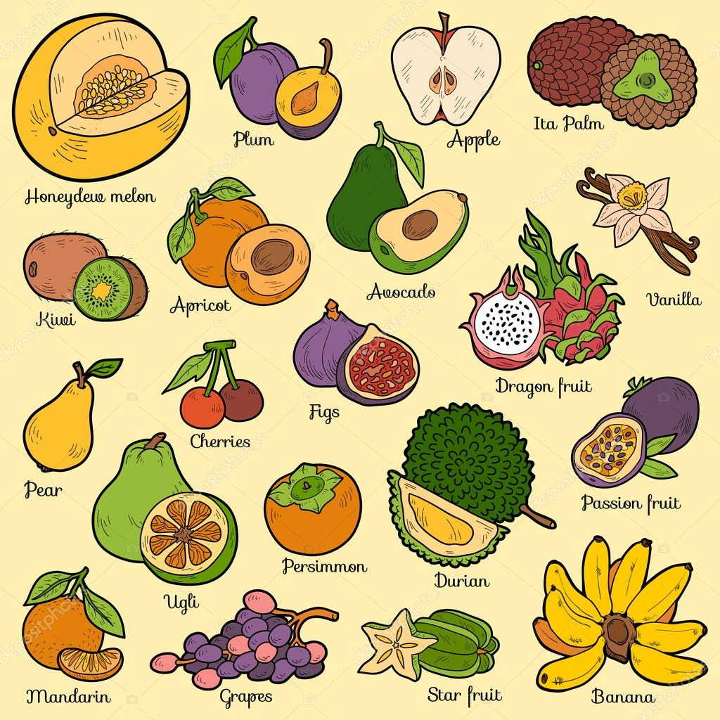 Color set with tropical fruits, vector cartoon stickers