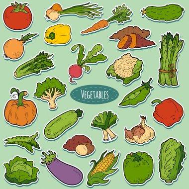 Color set with vegetables, vector cartoon stickers