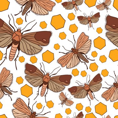 seamless pattern with wax moth