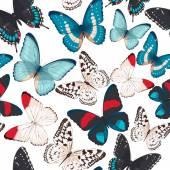 Plynulé barevné motýly