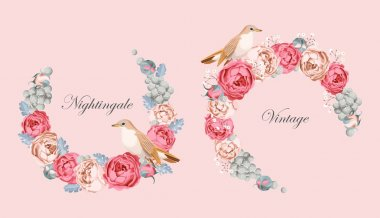 Beautiful vintage vector card with nightingale