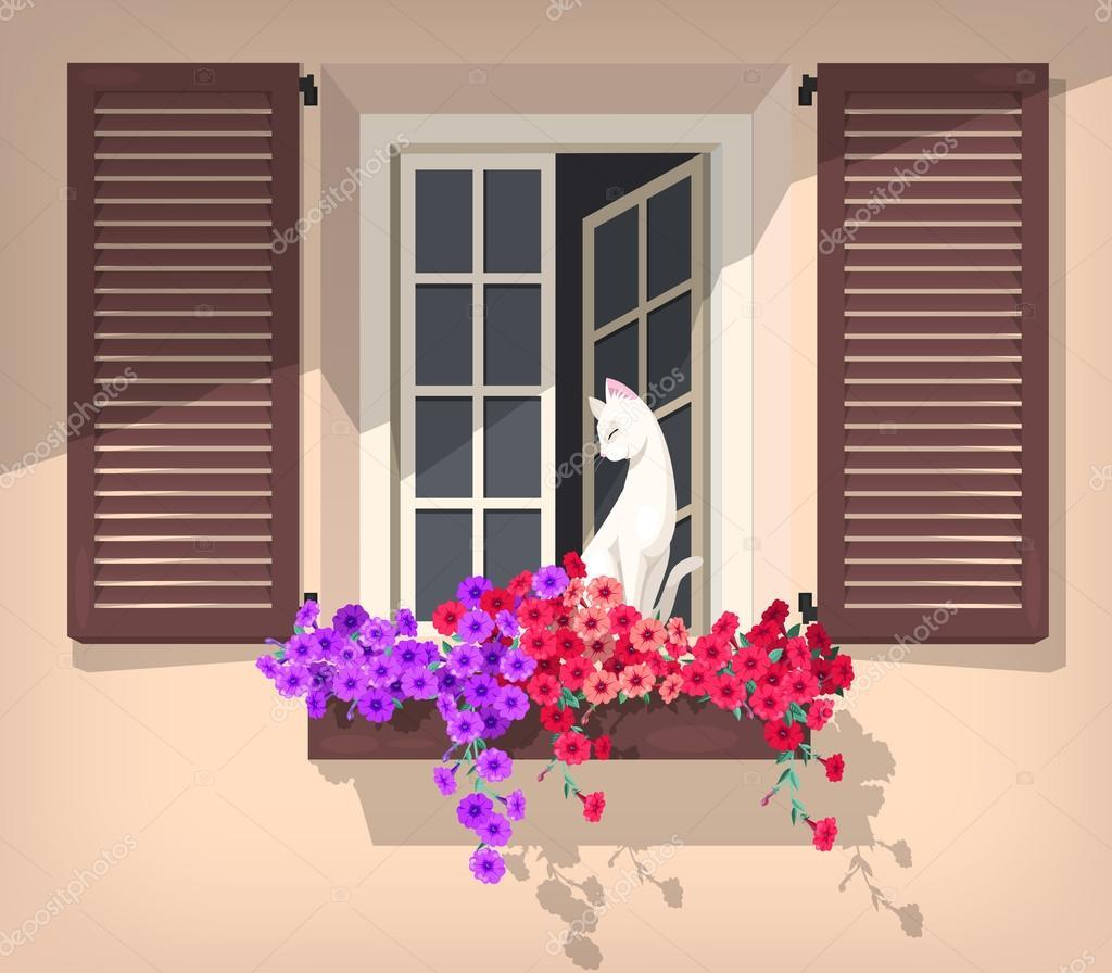 Open window with cat