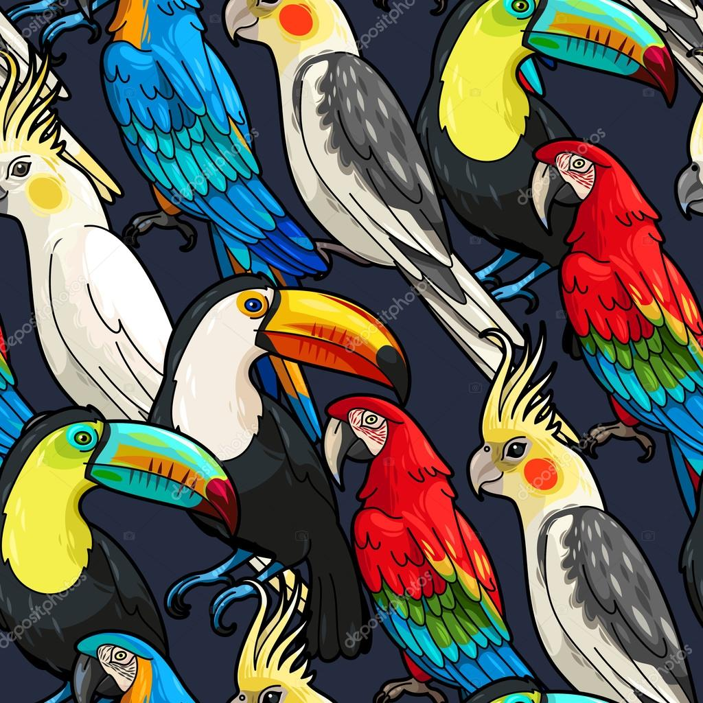 Seamless macaw and toucan