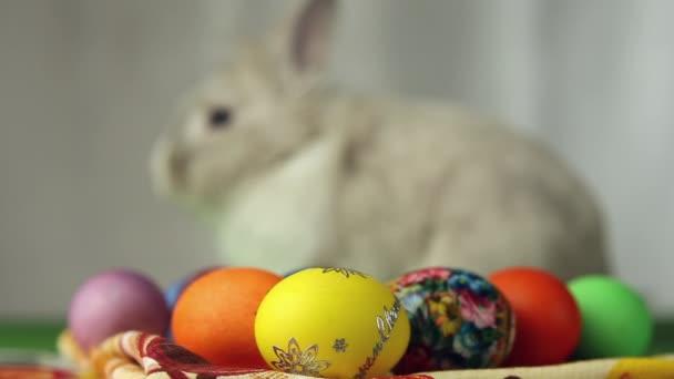 Húsvéti nyuszi húsvéti tojással