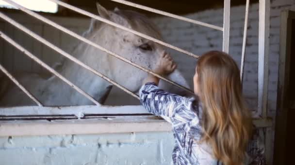 The girl in the barn with the horses