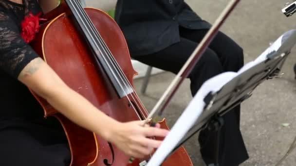 A lány zenész játszik a cselló