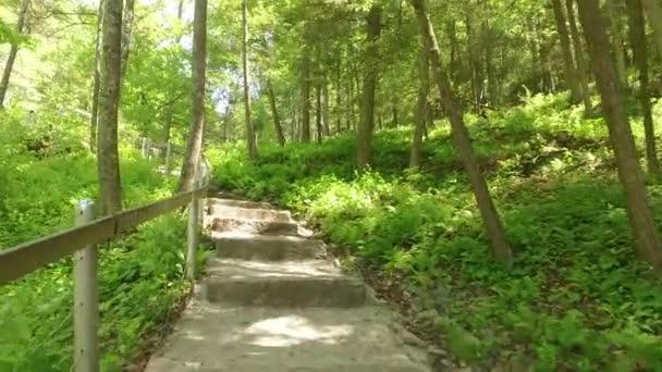 Sentiero natura con scale nei boschi