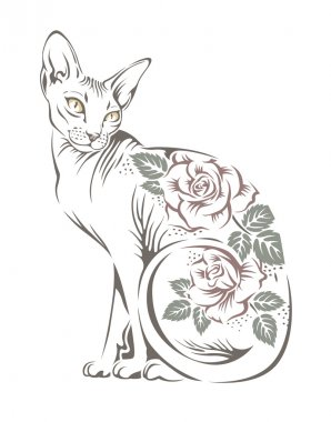 Cat sphinx breed with flowers