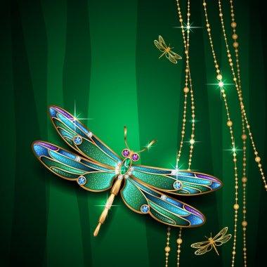 Beauty jewel dragonfly