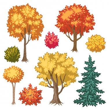 autumn trees and shrubs