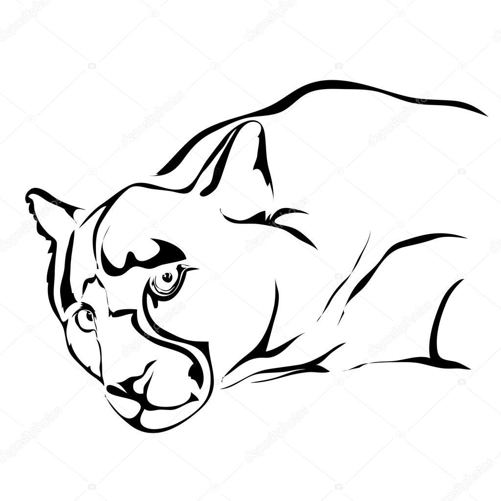 Umreißen Sie traurig, Jaguar oder Puma Illusrtation Vektor. Für l ...
