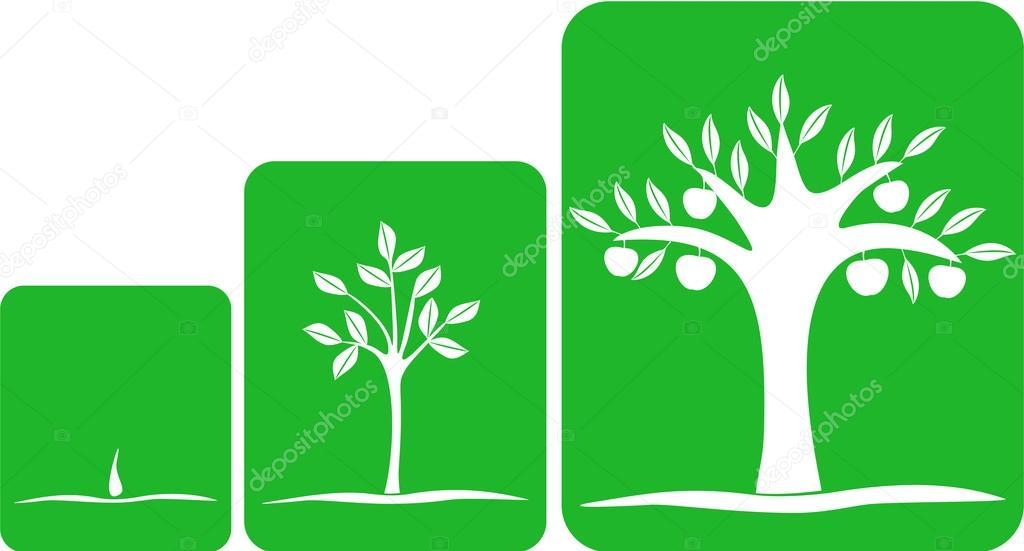 tree grows