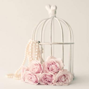 Pink roses and birdcage