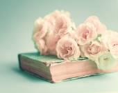 Bílé růže nad knihou