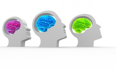 Human heads with brain