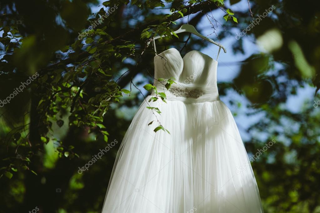 Wedding Dress Hanging On A Tree Stock Photo 86526070