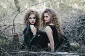 Dvou vintage čarodějnice shromáždili předvečer Halloween