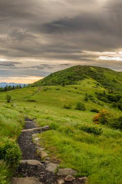 Appalachian Trail Ascending Jane Bald