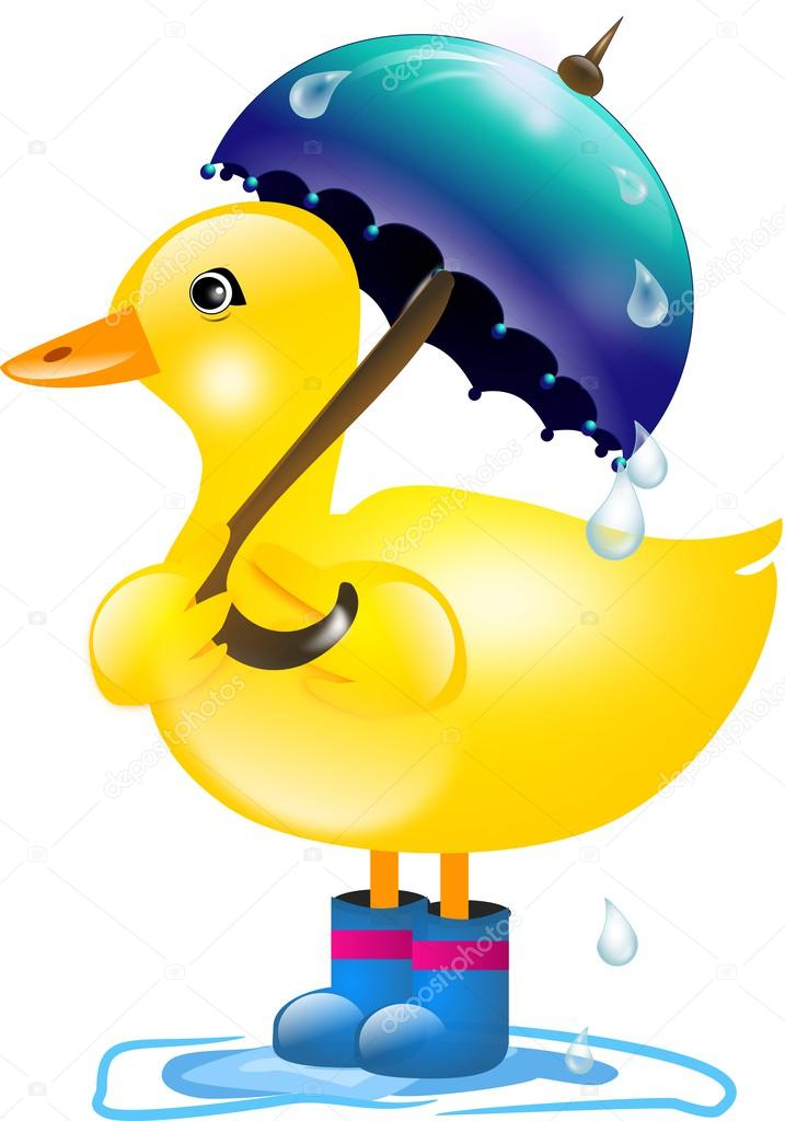 Duck With Umbrella In Rain Stock Photo 169 Sidliks 53039549