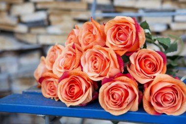 orange roses on a blue rustic chair
