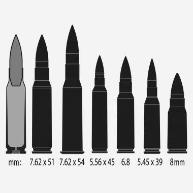 Various bullets, war, danger, weapon, sectional view, Vector illustration stock vector