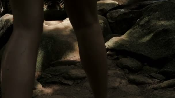 A young woman waking through a tropical jungle. Close up of legs.