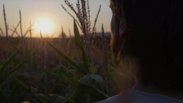 Zár-megjelöl-ból jóképű férfi szakállal, természet, táj, naplemente, Napkelte