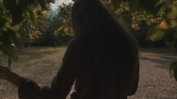 Hezká žena chůze na podzimní žluté park, pohled zezadu