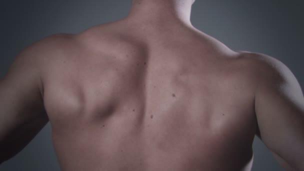 Back of muscular man posing in studio.