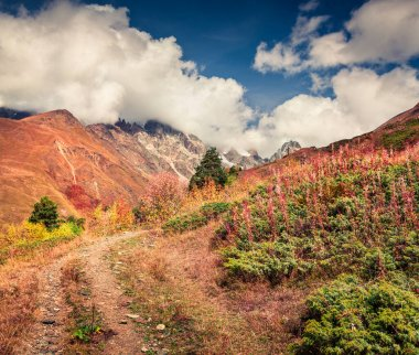 Sunny autumn lanscape with old dirty road in Caucasus mountains. Colorful scene on the hills of Mt. Ushba in Upper Svaneti, Georgia, Europe. Artistic style post processed photo.