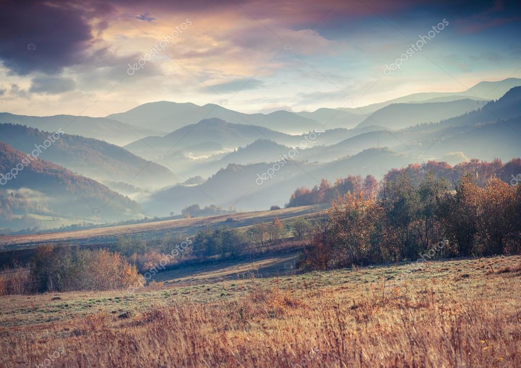 Фотообои morning in the Carpathian mountains.