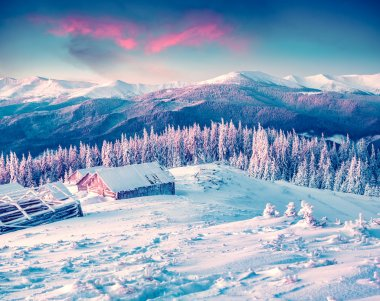 winter morning in the Carpathian mountains